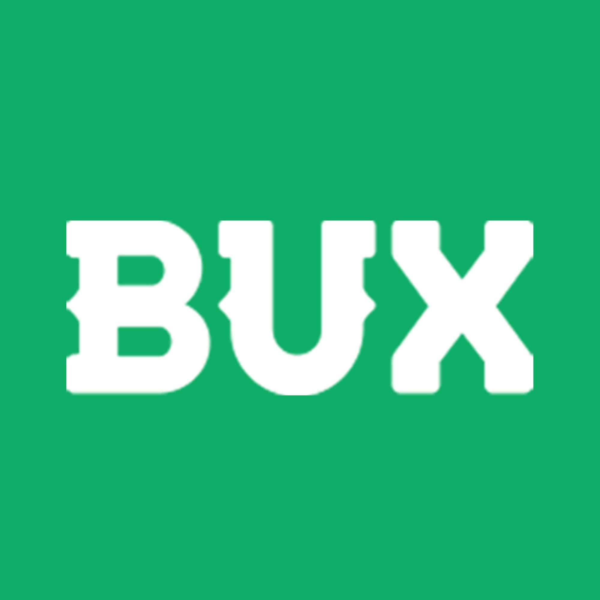 bux-online-marketing-bureau-webdevelopment-haarlem-made-marketing-5